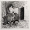 5-das-rhinozeros